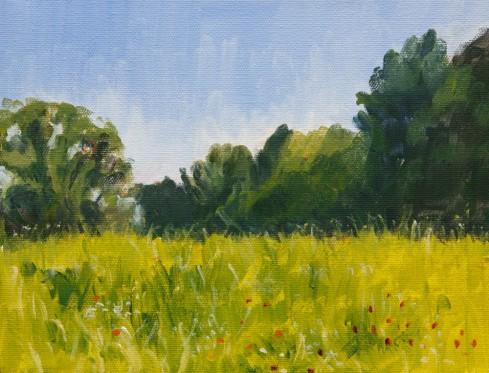 Barnsley Garden Field